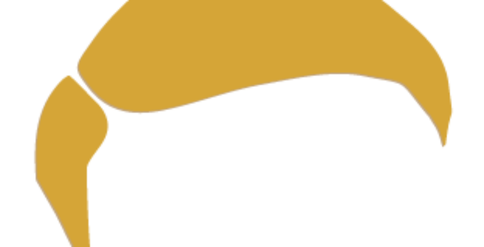 stepchild-logo-Gold-combover2